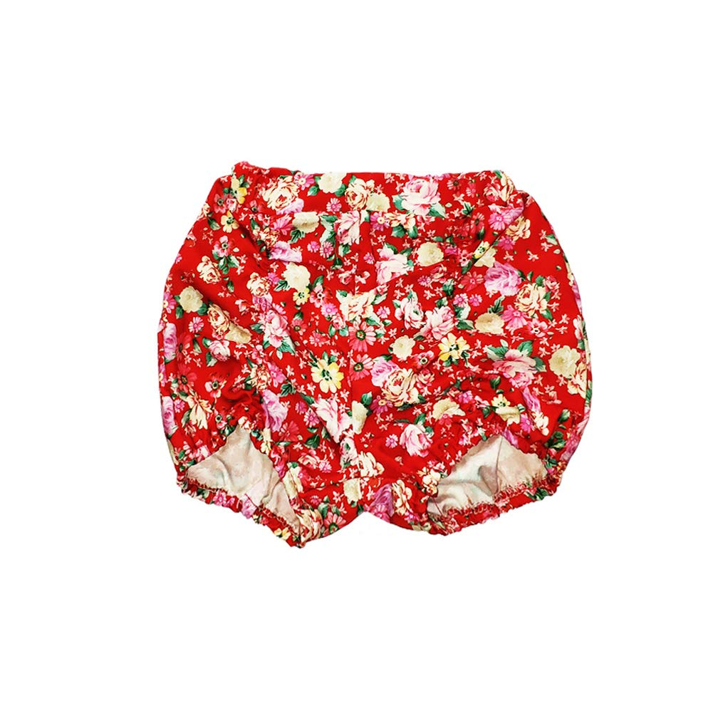 BAOBAOLAI Baby Girls Sling Off-The-Shoulder Tops Summer Clothes Flower Shorts 2pcs Outfits