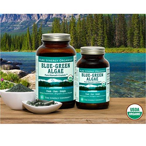 Pure Synergy USDA Organic Klamath Blue Green Algae Powder (3.2 oz) Fully Tested, Non-GMO by Pure Synergy (Image #6)