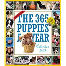 The 365 Puppies-A-Year Calendar 2008