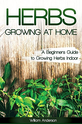 herbs-growing-at-home-a-beginners-guide-to-growing-herbs-indoor