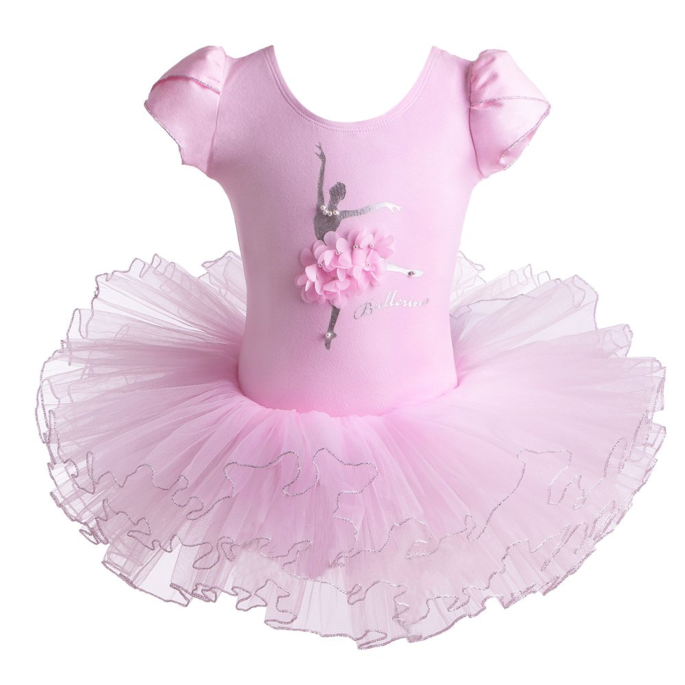 BAOHULU Leotard for Girls Ballet Dance Short Sleeve Tutu Skirted Dress Ballerina Costumes (3-4 Years(Tag No.M), Pink Flower) by BAOHULU