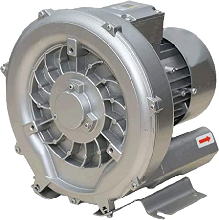 1266/5000 Soplador de Hojas centrífugo de Alta presión, diseño de Ciclo centrífugo, Carcasa de Aluminio de aviación, Motor de Cobre, succión y soplador rotativo de bajo Ruido de Doble propósito: Amazon.es: Hogar