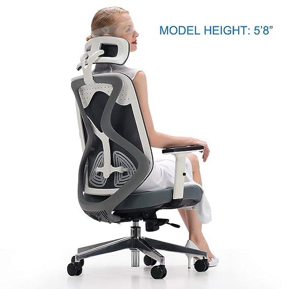 Silla de oficina ergonómica Hbada, respaldo alto, silla de ...