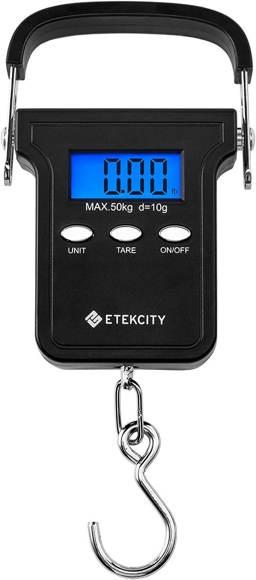Balance Peson Digital Electronique Pese Bagage Pêche Cuisine Mini 50kg LCD FR