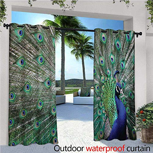 Peacock Outdoor Privacy Curtain for Pergola Peacock Displaying Elongated Majestic Feathers Open Wings Picture Thermal Insulated Water Repellent Drape for Balcony W120