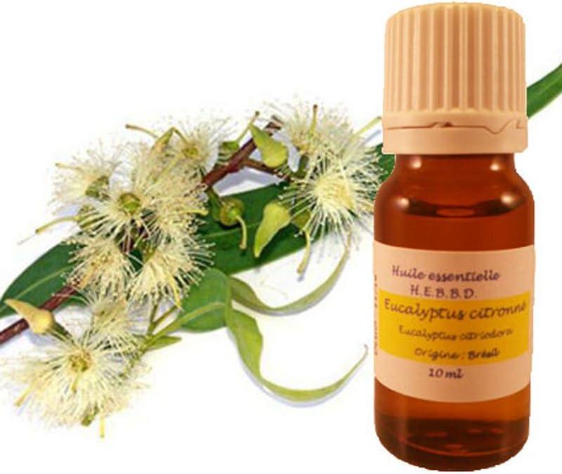 Huile Essentielle Eucalyptus Citronné 10ml: Amazon.fr: HygiÚne et Soins du  corps