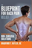 The Blueprint For Back Pain Relief: The Essential