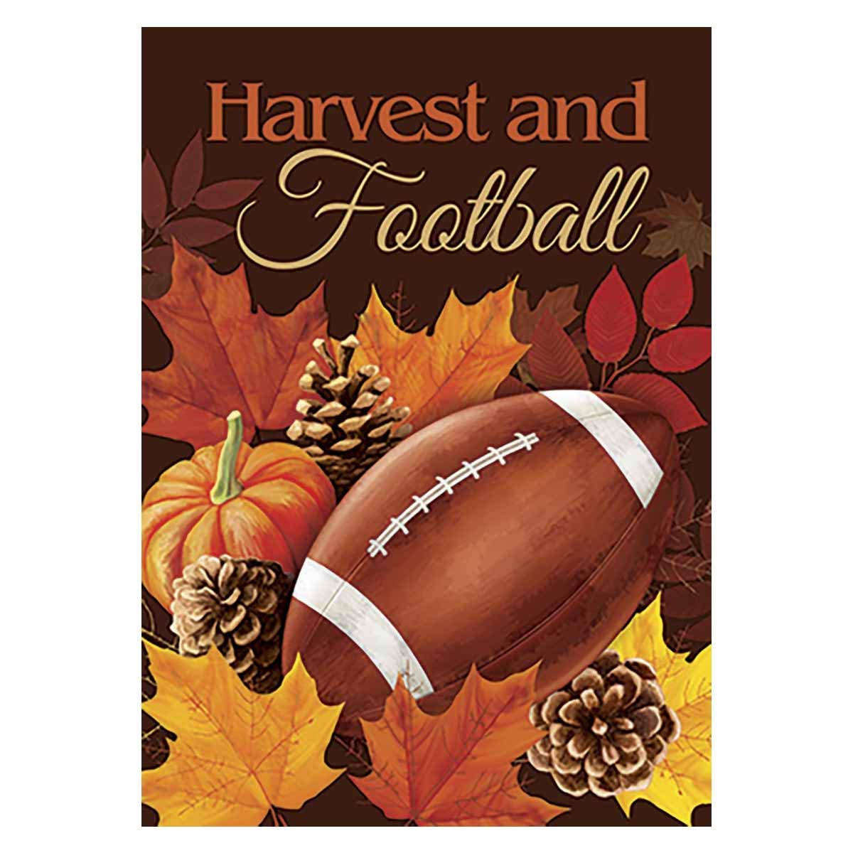 Morigins Football House Flag Fall Touchdown Sports Decorative Autumn Sports Game Day 28x40 Inch
