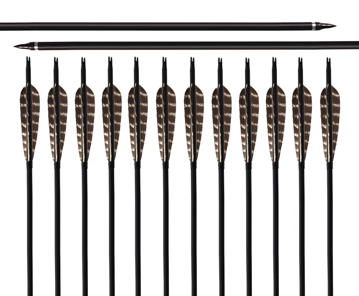 ARCHERY SHARLY [Pack of 12] 31Inch Carbon Targeting Practice Arrows Turkey Feather Fletching Arrows with Removanle Tips for Recurve Traditional Long Bow