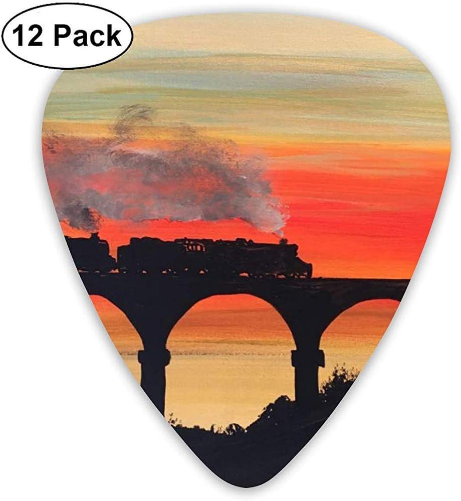 Sunset Train Guitar Pick Set Guitarra Bajo Mandolina Ukulele 0.46mm 0.71mm 0.96mm Paquete de 12 Púas de guitarra Plectrums con soporte de púas