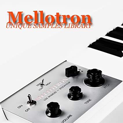 Amazon com: MELLOTRON - Large unique original 24bit WAVE