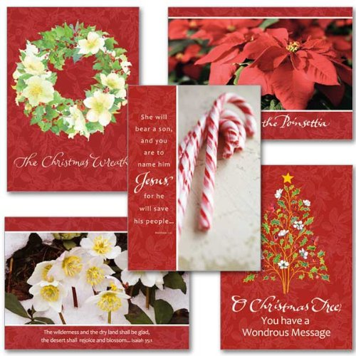 Legends of Christmas Assortment Deluxe Xmas Cards with Embossed Envelopes 5 by 7 Inch