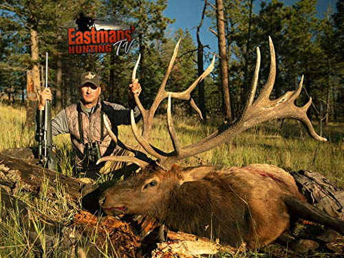 Hunting Nontypical Bull with Guy Eastman