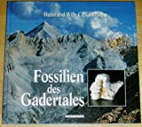 Image de Fossilien des Gadertales (German Edition)