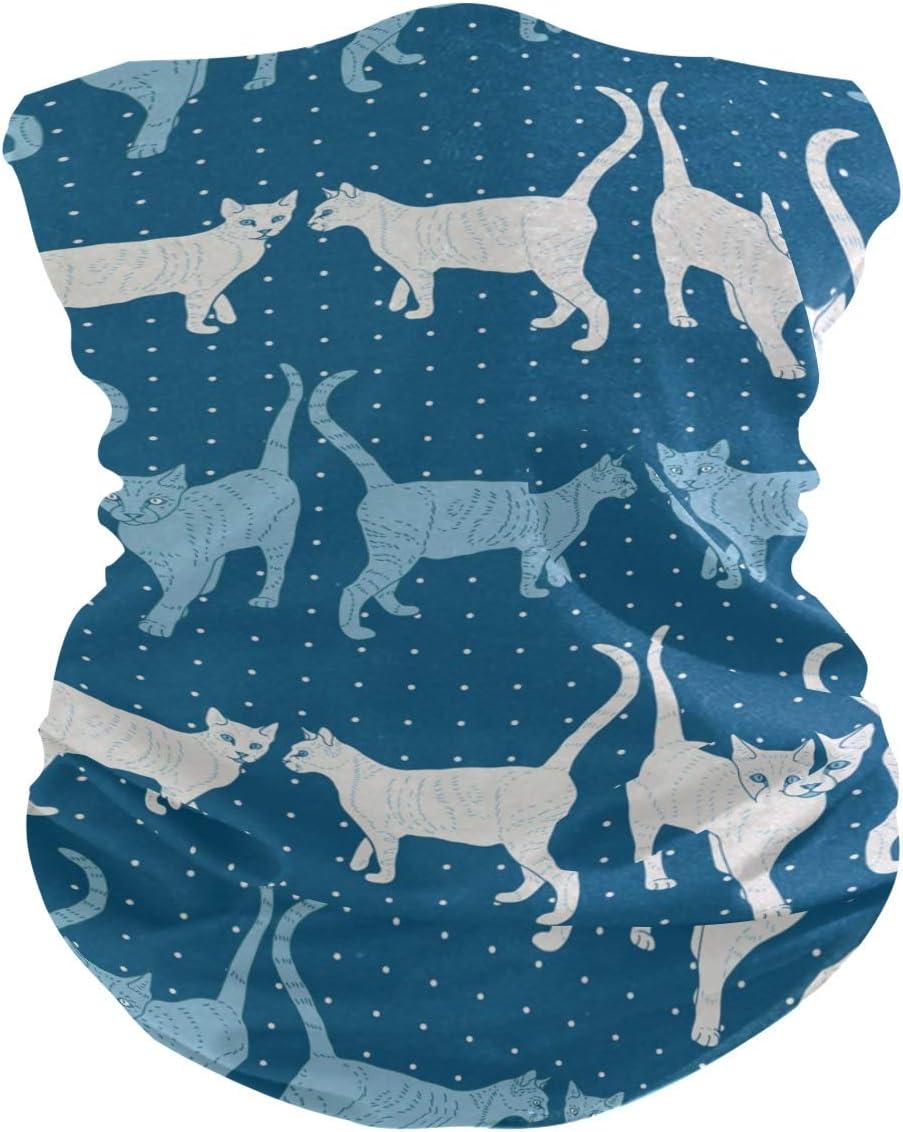 BUXI Printing Sweatband,Gatos En Polaina con Cuello De Onda Azul, Protectores Faciales Deportivos De Secado Rápido para Montar A Caballo En Montaña,25x50cm