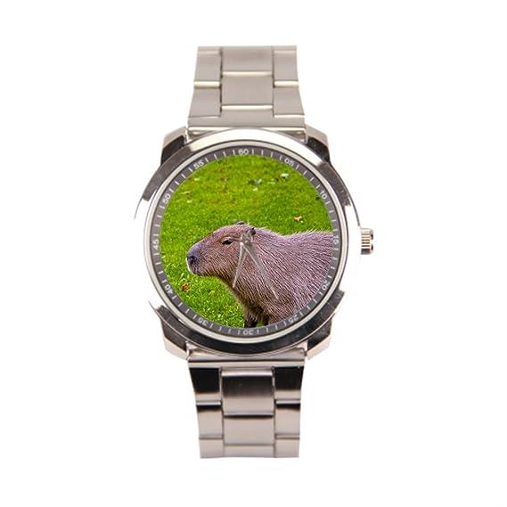 hottsummer animales tiendas de American reloj de pulsera hombre: Amazon.es: Relojes
