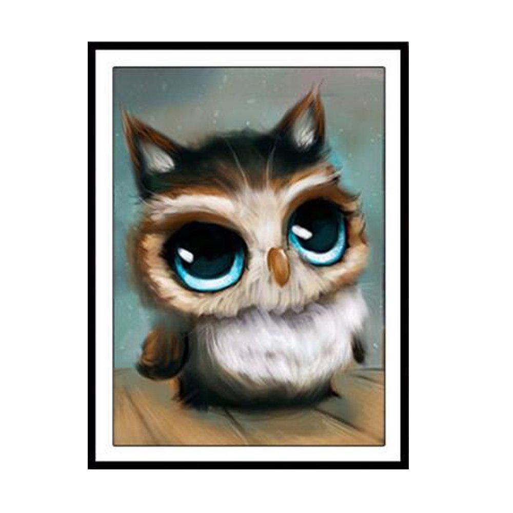 bordado decoraci/ón de pared para el hogar Little Owl2 30*45CM bricolaje Kit de punto de cruz 20 x 30 cm TONVER 5D Kit de pintura de diamantes dibujo de b/úho sala de estar diamante