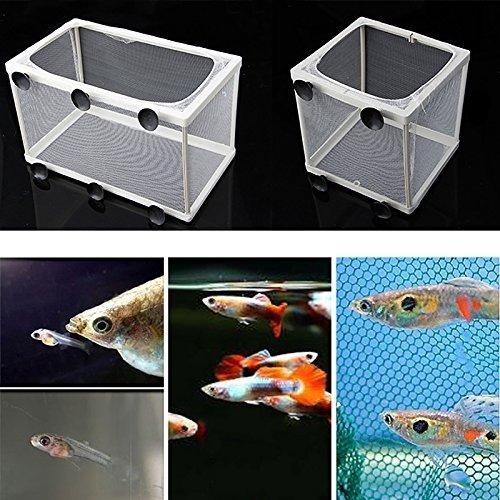 Fish Breeding Trap - Aquarium Fish Tank Guppy Breeding Breeder Baby/Fry Net Trap Box Hatchery (L)