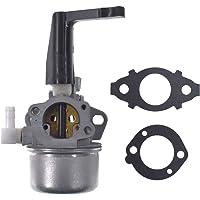 JRL 696065 Amoladora de Repuesto para carburador cultivador con Juntas para Briggs & Stratton