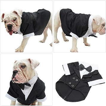 LEEDY - Disfraz de Perro, Traje de Esmoquin para Perros, Ropa para ...