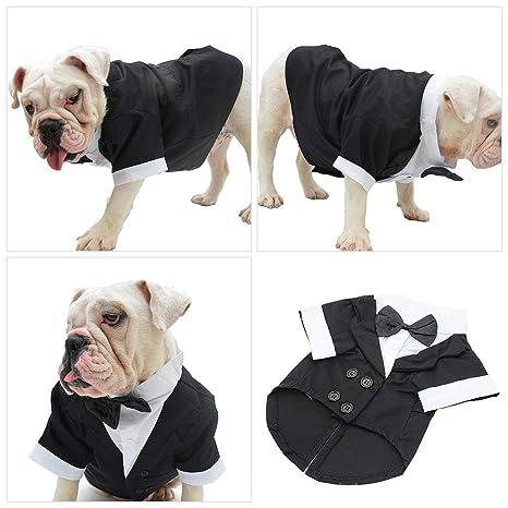 LEEDY - Disfraz de Perro, Traje de Esmoquin para Perros ...