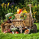 CSFOTO 4x4ft Background for Autumn Harvest Photography Backdrop Cart Straw Hay Bales Pumpkin Apple Flower Thanksgiving Outdoor Farmland Rural Scence Country Photo Studio Props Polyester Wallpaper
