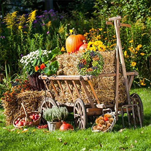 Inkjet 14 Cart (CSFOTO 8x8ft Background for Autumn Harvest Photography Backdrop Cart Straw Hay Bales Pumpkin Apple Flower Thanksgiving Outdoor Farmland Rural Scence Country Photo Studio Props vinyl Wallpaper)
