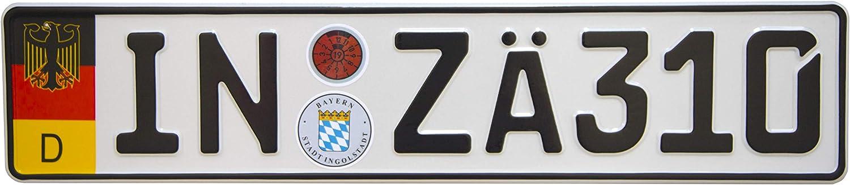 International Tie European German Euro License Plate with Random Numbers Stuttgart