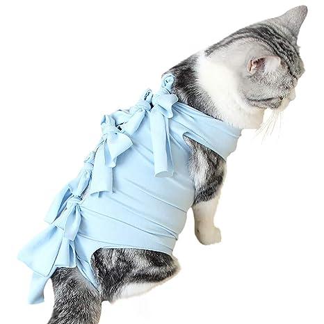aiyvi - Chaleco de cirugía para Gatos, Ropa médica para Mascotas ...