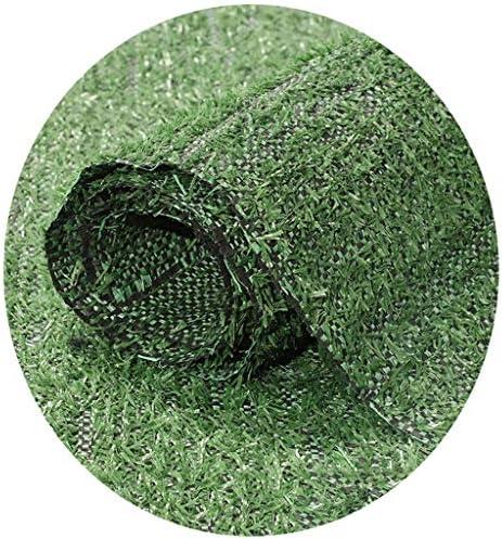 CarPET Multifunktionaler Anti-Aging-Kunstrasen, grüner Rasen im Innen- und Außenbereich für Balkon- und Terrassenprojekte, Sonnenschutz, atmungsaktiv und durchlässig 10 mm YNFNGXU (Size : 2x3.5m)