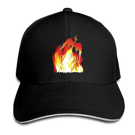 jinhua19 Gorras béisbol Sandwich Baseball Cap Unisex Adjustable Hat Bird Flng out in Flames