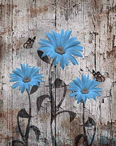 Blue Brown Rustic Home Decor, Daisy Flowers & Butterflies, Farmhouse Country 8x10 Inch with 11x14 Inch Wall Art Picture