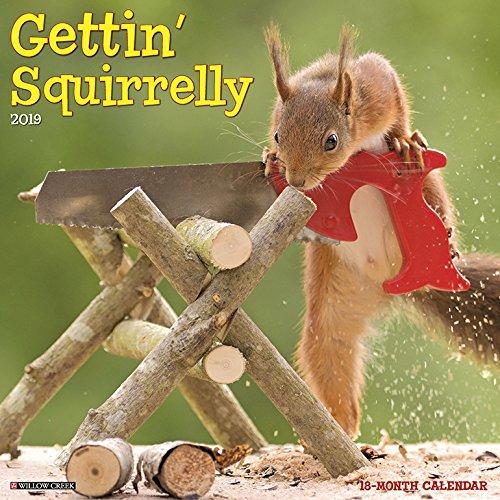 Top squirrel calendar 2020 funny for 2020