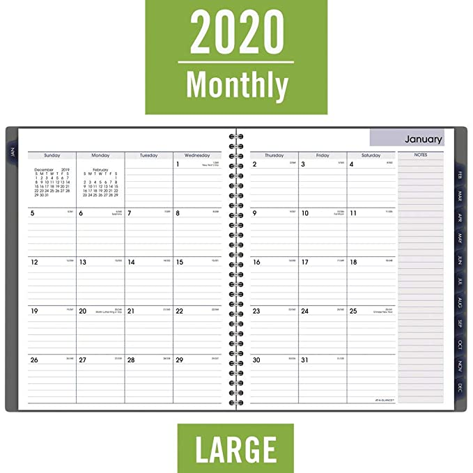 AT-A-GLANCE 2020 Monthly Planner, DayMinder, 8-1/2