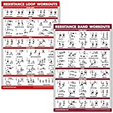 QuickFit 2 Pack - Resistance Bands and Resistance Loops Workout Posters - Set of 2 Laminated Charts - Resistance Band Tubes and Loops Exercise Charts (Laminated, 18' x 27')