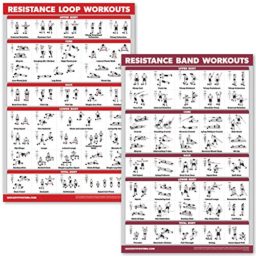 QuickFit 2 Pack - Resistance Bands and Resistance Loops Workout Posters - Set of 2 Laminated Charts - Resistance Band Tubes and Loops Exercise Charts (Laminated, 18
