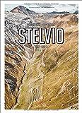 Porsche Drive: Stelvio: Pass Portraits; Italy 2757M (English and German Edition)
