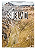 img - for Porsche Drive: Stelvio: Pass Portraits; Italy 2757M (English and German Edition) book / textbook / text book