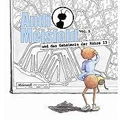 Andi Meisfeld und das Geheimnis der Röhre 13 (Andi Meisfeld 5) | Tom Steinbrecher