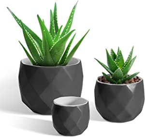 T4U Succulent Planter Pot with Drainage - Black Ceramic Geometric Pots Pack of 3 Different Sizes Pots for Herbs Cactus Plants Flowers - Modern Matte Pots for Home Office Decoration Garden Gift