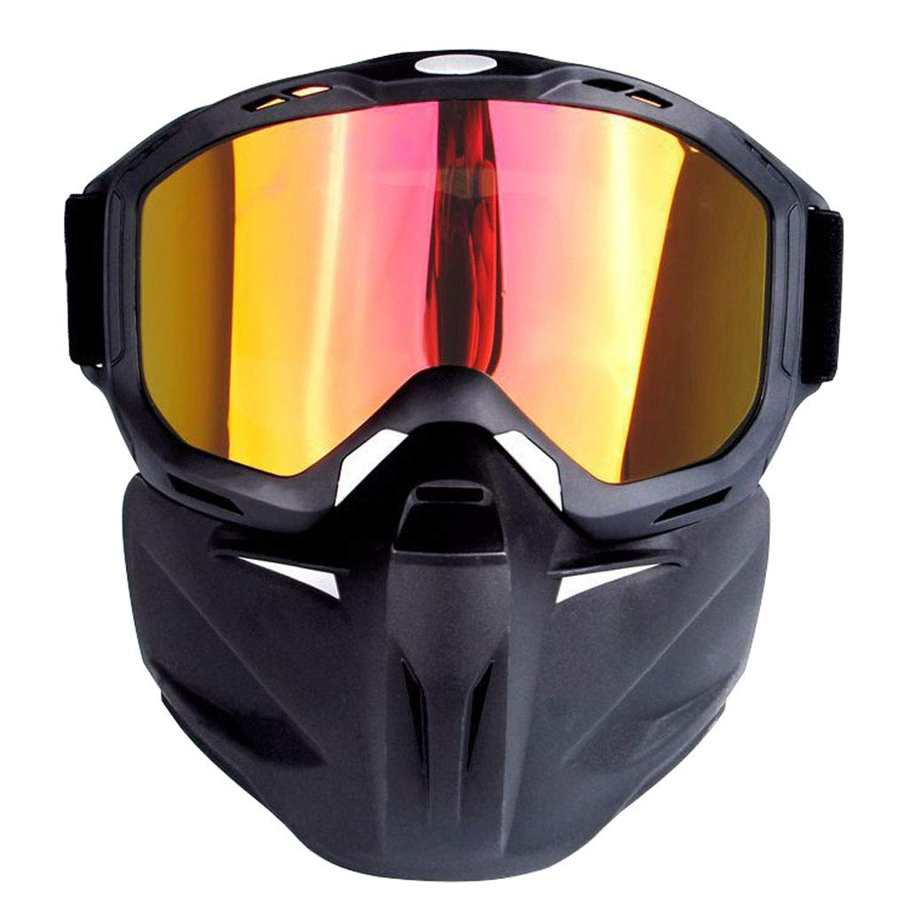 SX Goggles Mask Motorcycle Glasses, Off-Road Windproof Goggles Outdoor Sports Equipment (Color : Red)