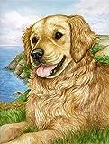 Caroline's Treasures CDCO0384GF Golden Retriever by Debbie Cook Garden Flag, Small, Multicolor Review