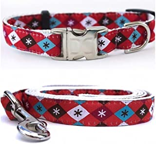 """product image for Diva-Dog 'Mad Mutts' Custom Small Dog 5/8"""" Wide Dog Collar with Plain or Engraved Buckle, Matching Leash Available - Teacup, XS/S"""