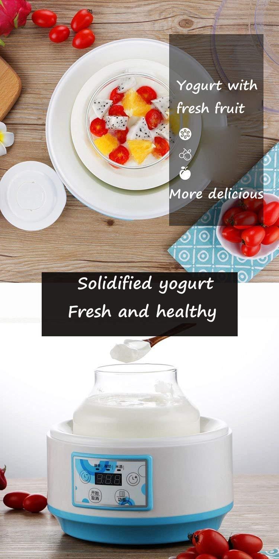 MUTANG Máquina de Yogur Eléctrico para el hogar Fermentador Multifunción Máquina de Enzimas para Vino de Arroz Automático Máquina de Yogur Portátil 2L: ...
