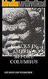Blacks in America Before Columbus