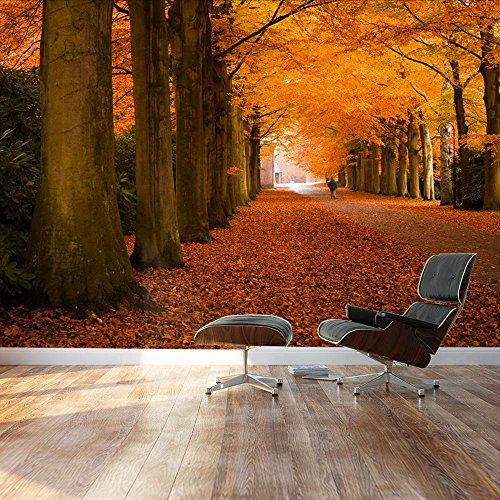 Autumn orange leaved trees line path Landscape Wall Mural
