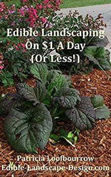 Edible Landscaping On $1 A Day (Or Less) by [Loofbourrow, Patricia]