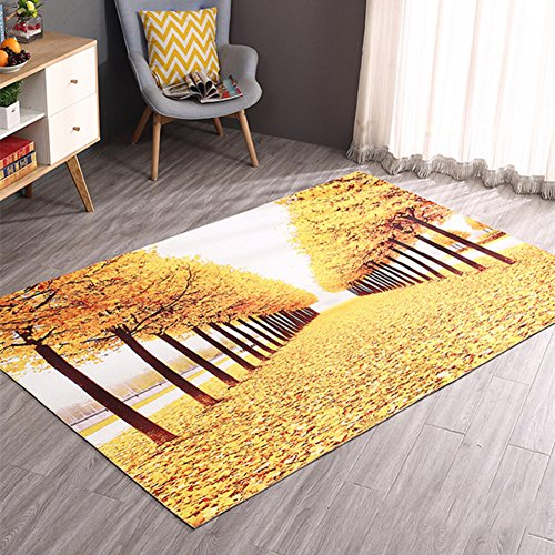 DW&HX 3D Skid mats Bedroom Foot pad Home Water Absorption Damp-Proof-B 80x120cm(31x47inch)