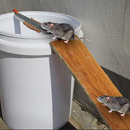 Kawosh Piege A Souris Reutilisable Tournant Pour Piege A Souris Reutilisable Vivant Pour Souris Rats Et Autres Parasites Et Rongeurs Amazon Fr Cuisine Maison