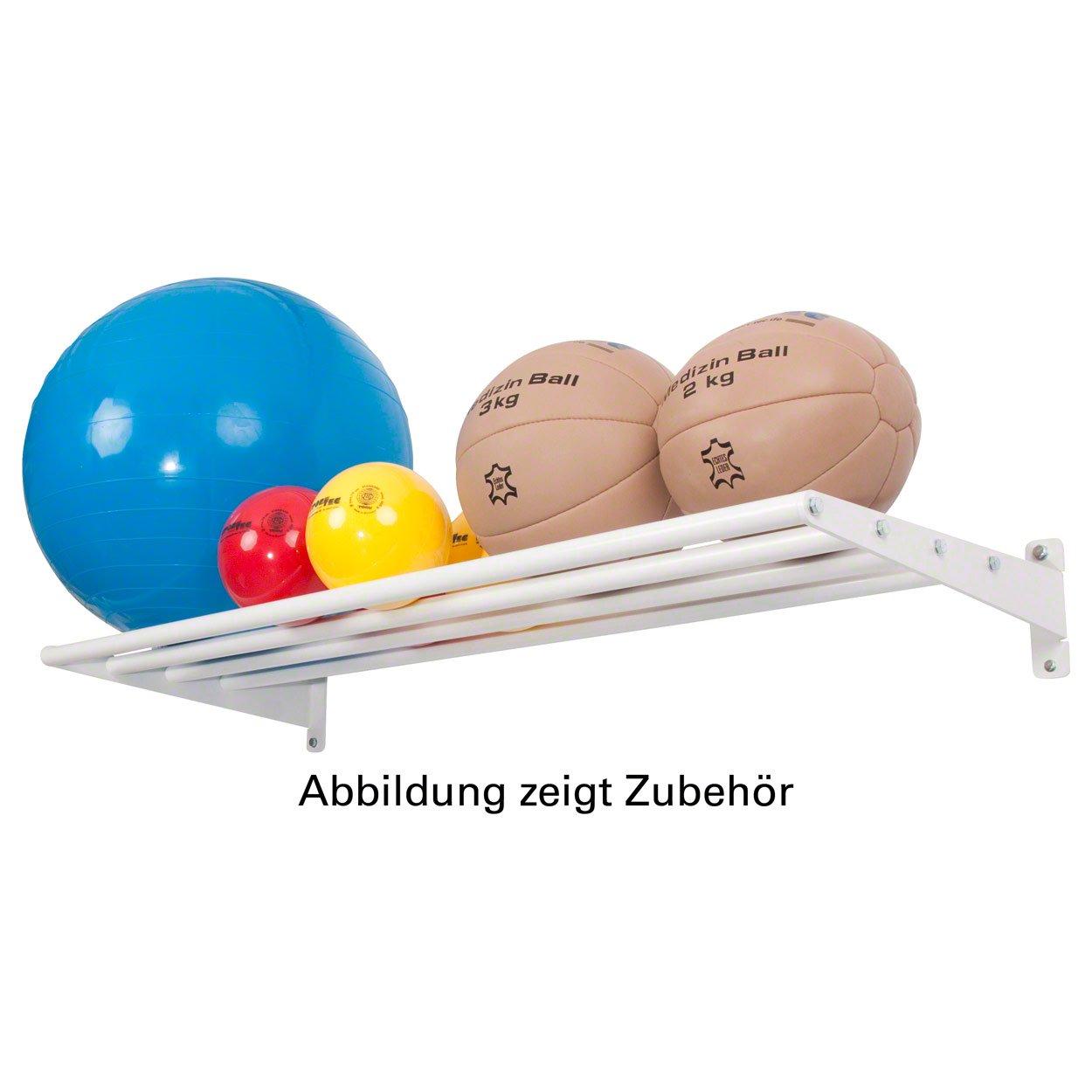 Wandhalterung Basismodul Ballregal Wandregal für Sporthallen, 6-tlg., 50x125 cm